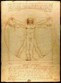 arms length human