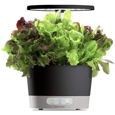 AeroGarden Harvest 360 black with Heirloom Salad Greens seed pod kit