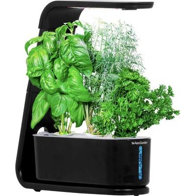 AeroGarden Sprout garden kit with 3 gourmet herb pods