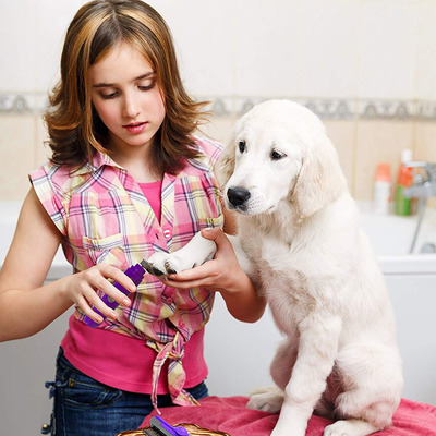 Groom your fur babies yourself with up to 30% off a Hertzko slicker brush or nail grinder today