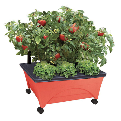 Do some gardening even in a smaller home with the City Pickers garden bed kit on sale for $20