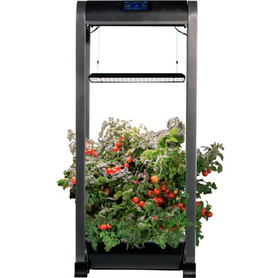AeroGarden Farm 12 XL garden kit