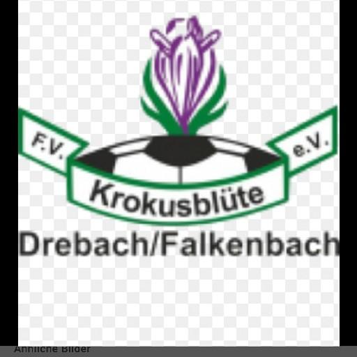 F.V Krokusblüte Drebach/ Falkenbach e.V