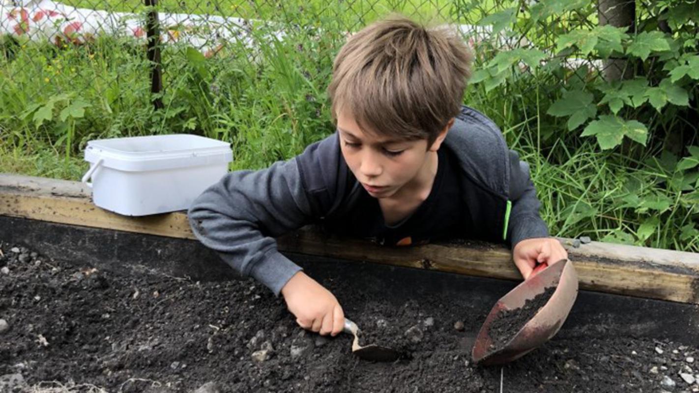 Prøv deg som arkeolog i ekte middelalderjord. Foto: Lise Mariann Alsli, NTNU Vitenskapsmuseet