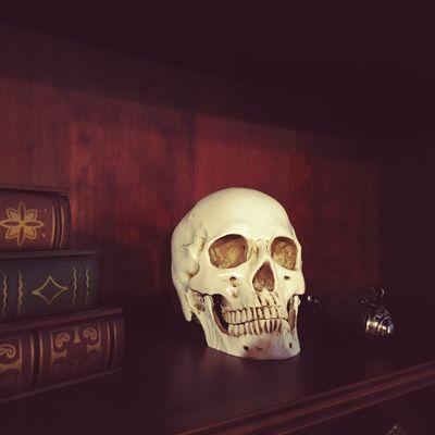 Calavera en una librería
