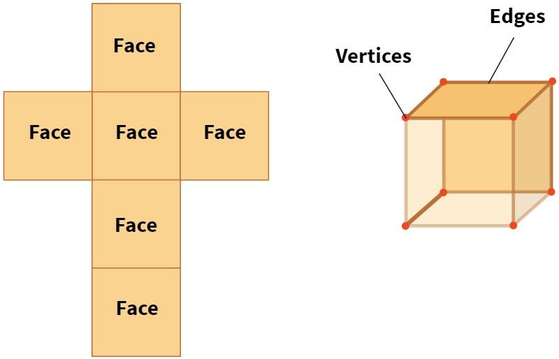 Cube - Vertices Faces Edges