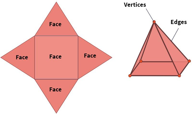 Square Pyramid - Vertices Faces Edges