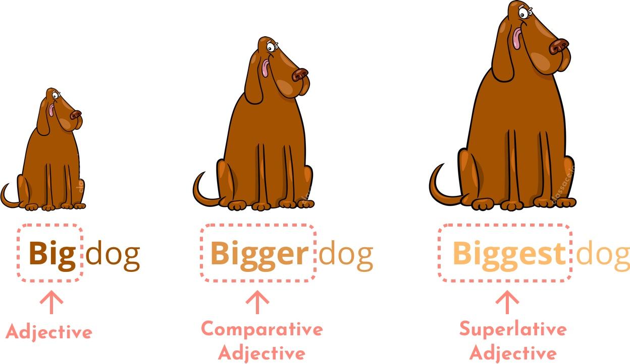 Comparative and Superlative adjectives - big, bigger, and biggest.