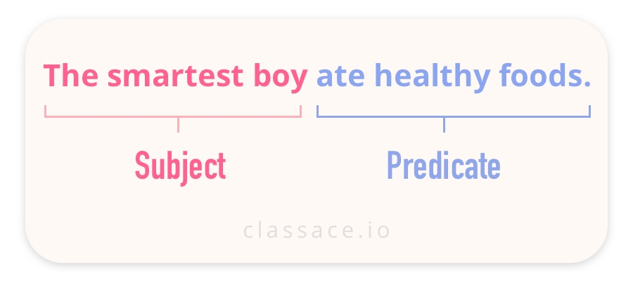 Subject Predicate Sentence Example: The smartest boy ate healthy foods.