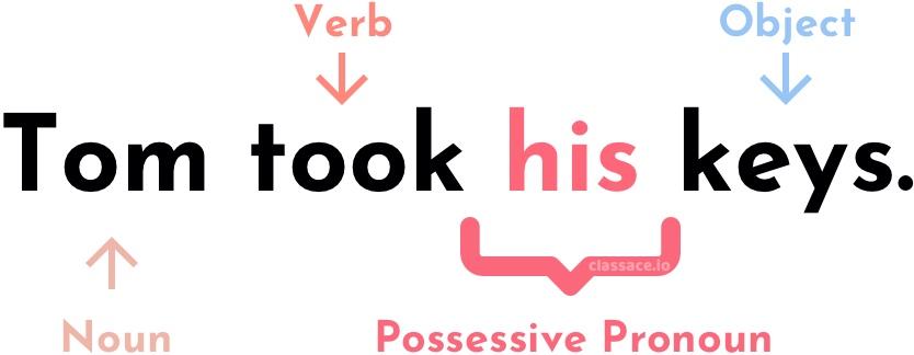 Noun, verb, possessive pronoun, and object labeled on the sentence,