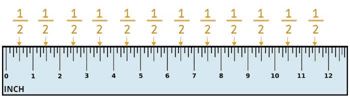 one-half on a ruler