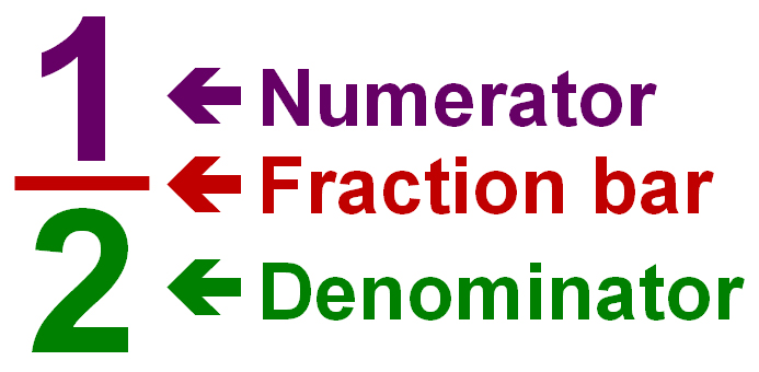 Parts of a Fraction: numerator, fraction bar, and denominator