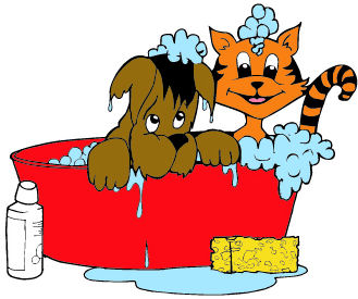 A cat and dog taking a bath in a bucket.