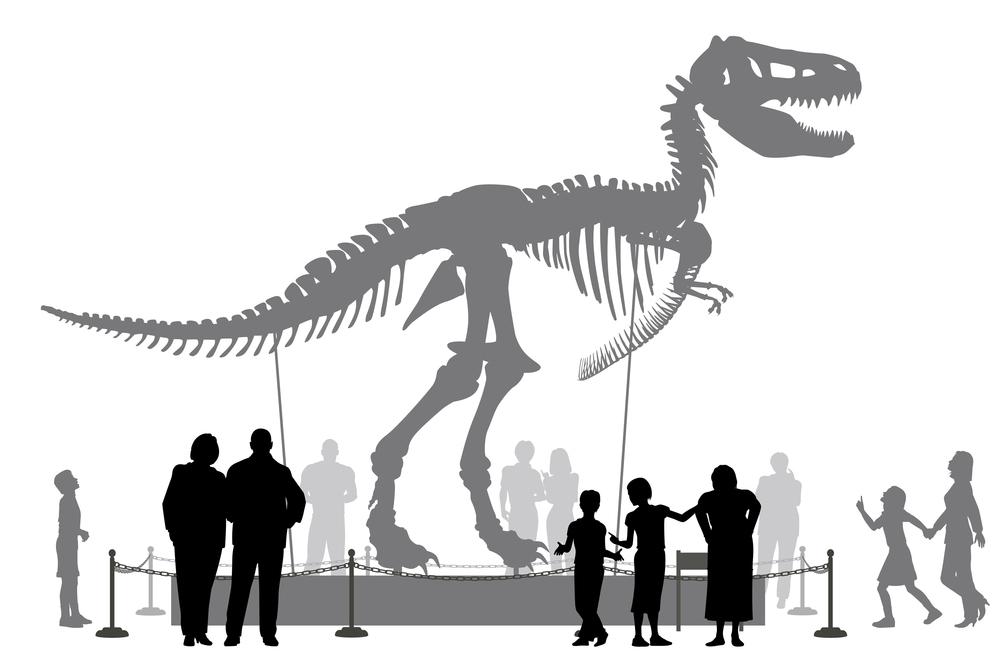 People viewing a dinosaur exhibit.
