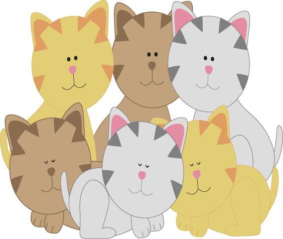Six kittens
