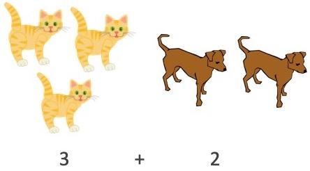 adding cats