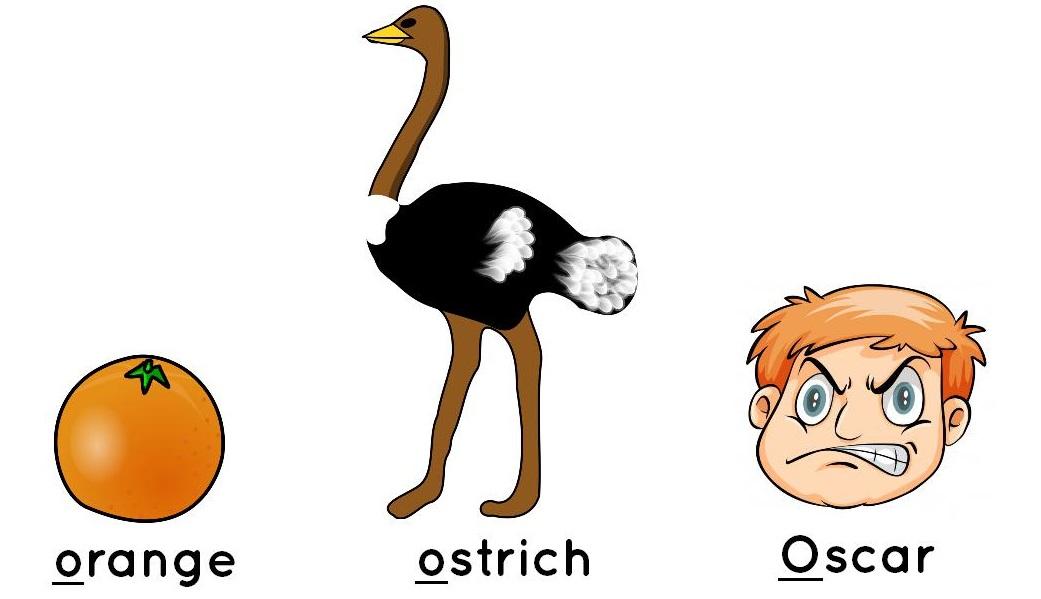 orange, ostrich, Oscar
