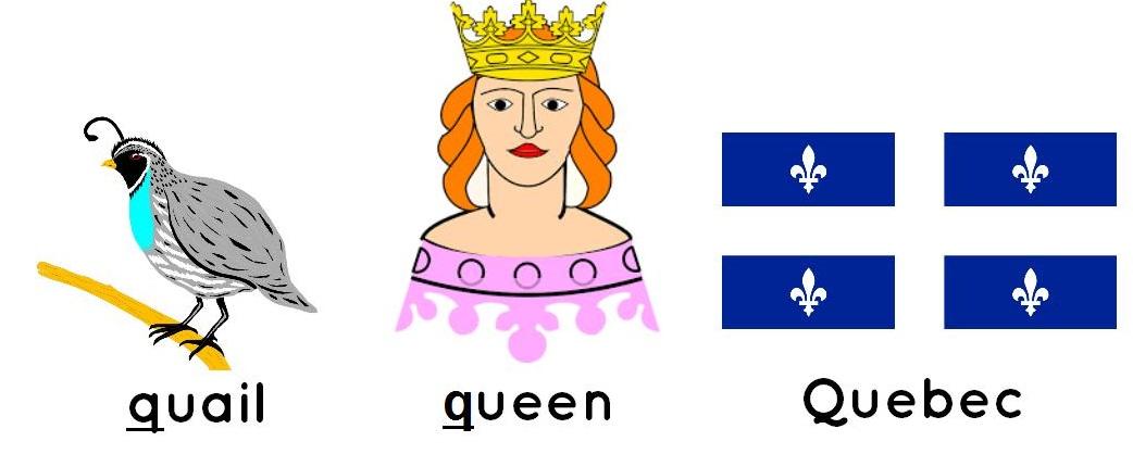 quail, queen, Quebec