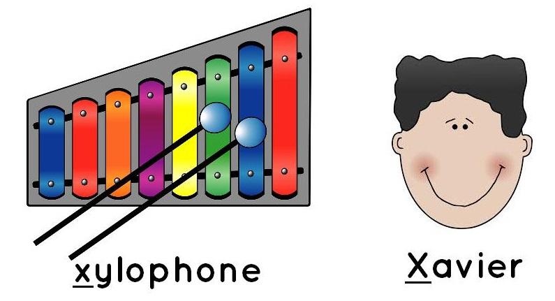 xylophone, Xavier