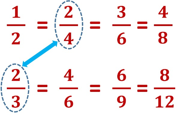 equivalent fractions of 1/2 and 2/3