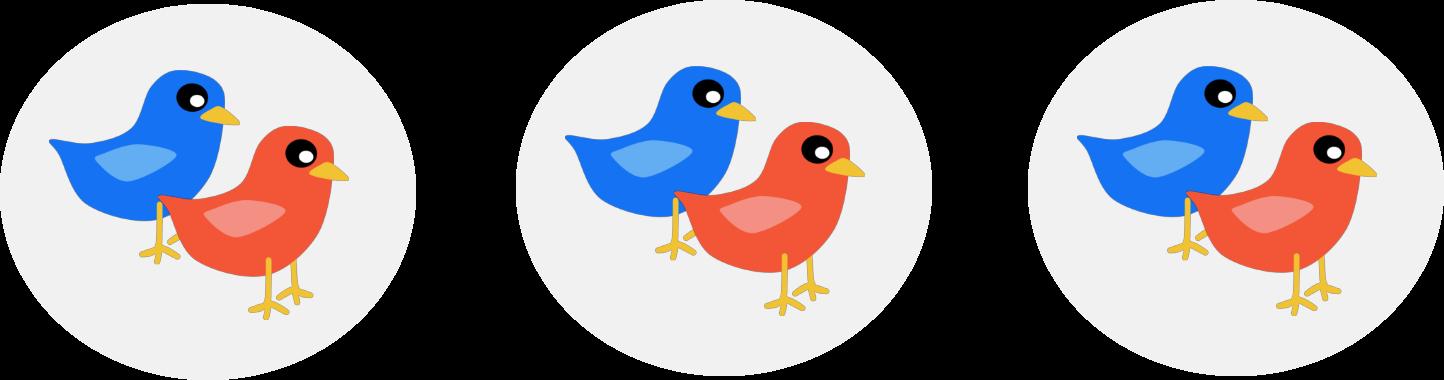 3 groups of 2 birds