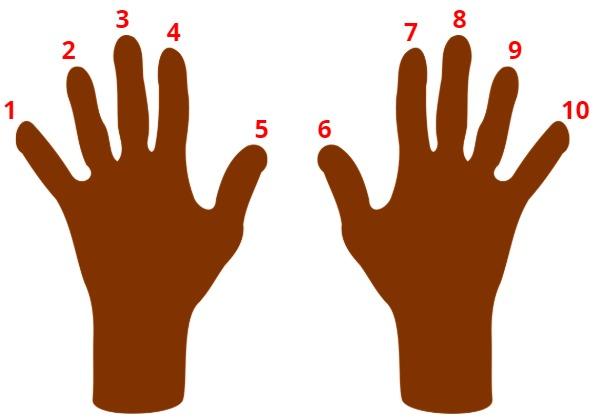 put up 10 fingers