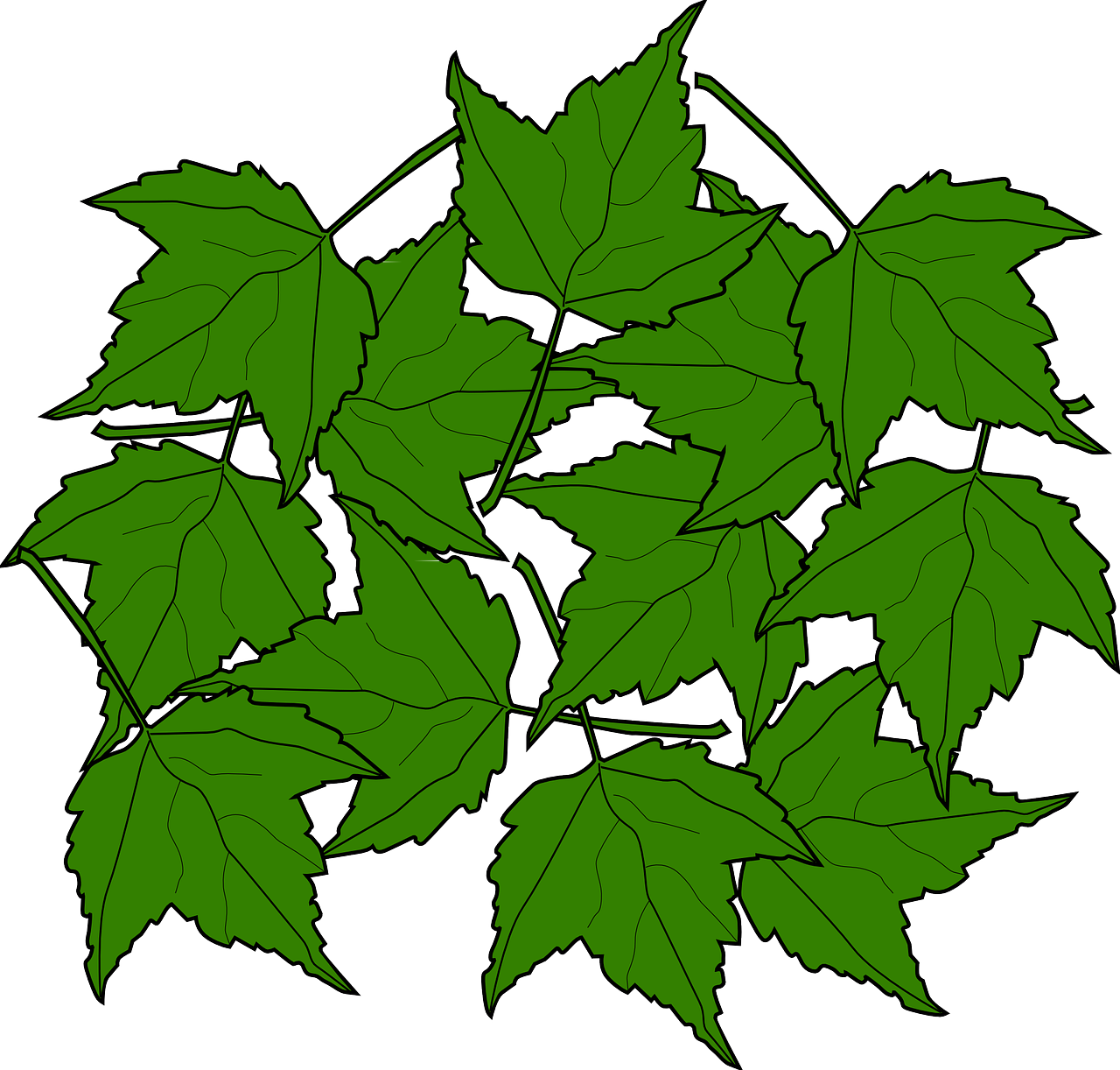 Twelve leaves