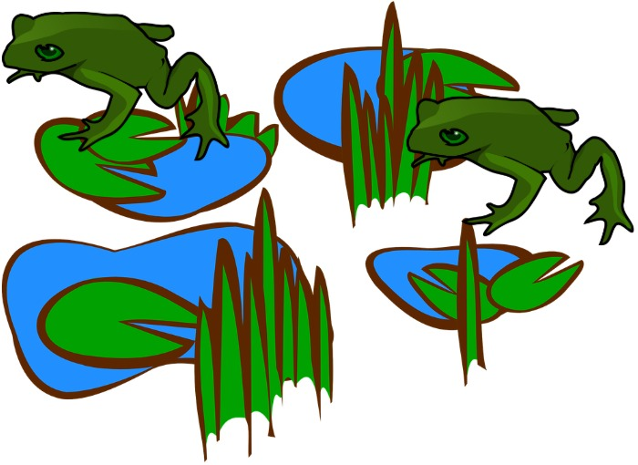 A frog jumping to lily pads.