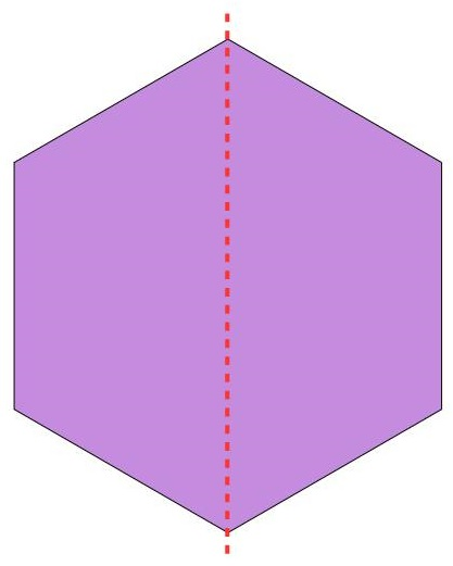 the hexagon divided into 2 parts