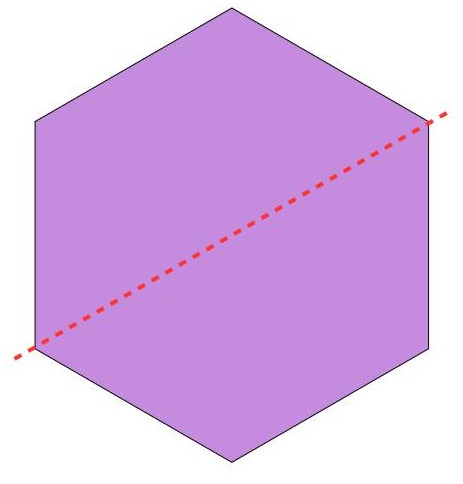another way to divide the hexagon