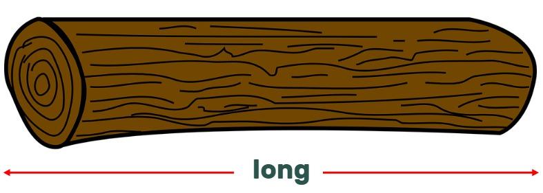 log  and matchstick