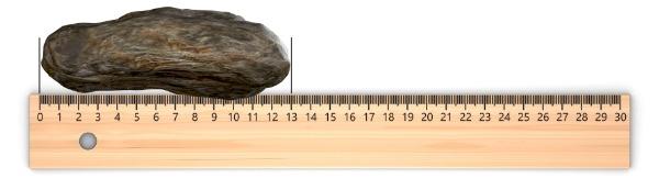rock on a ruler