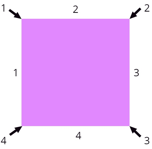 a square with its sides and vertices