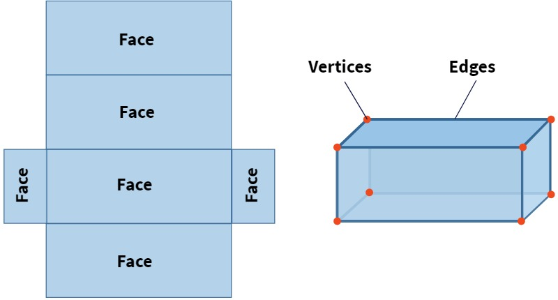 faces, vertices, and edges of a 3D shape