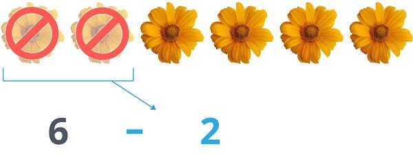 6 - 2 sunflowers