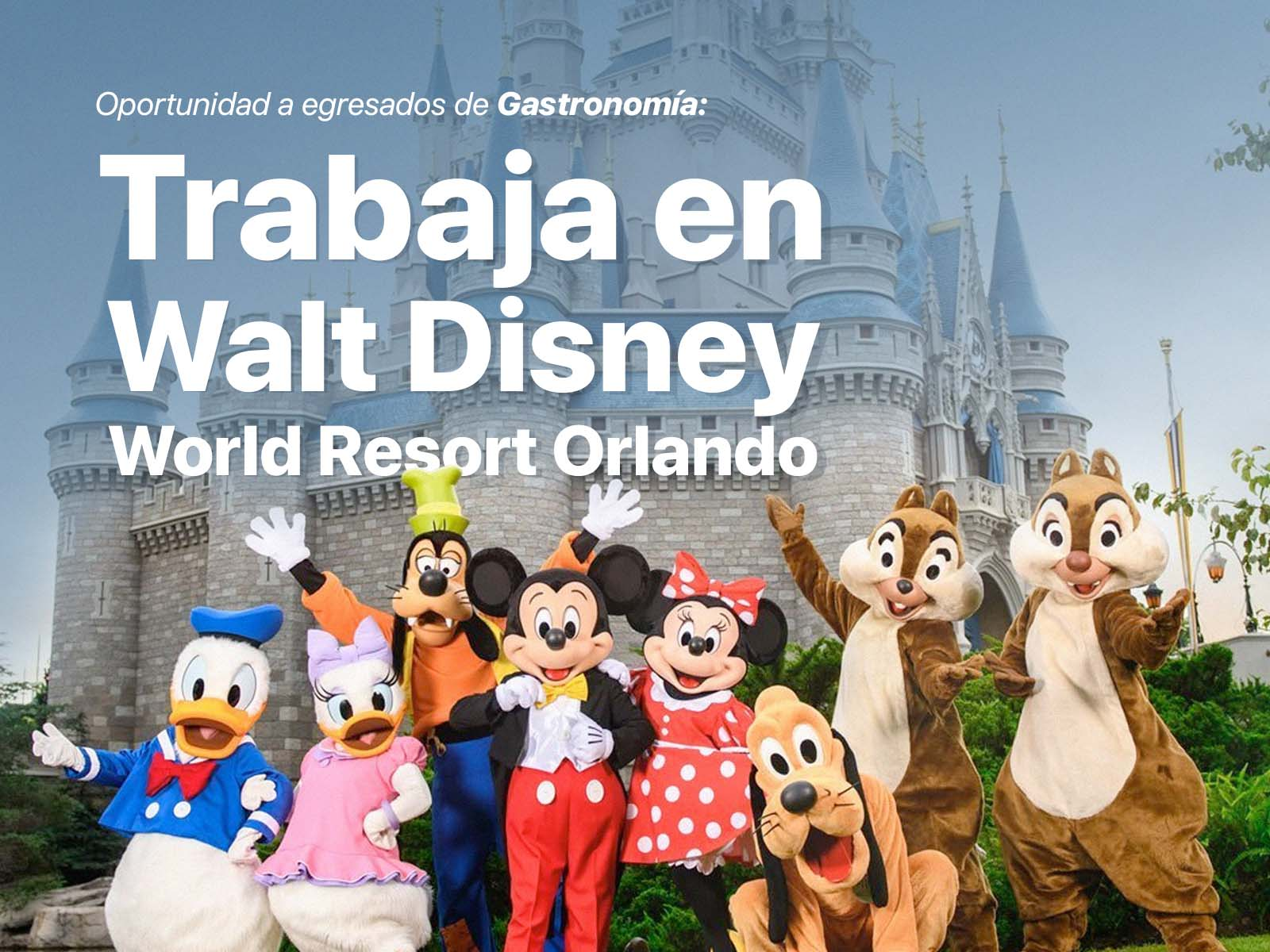 Trabaja en Walt Disney World