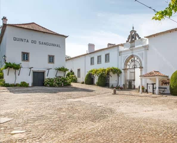 Location: Quinta do Sanguinhal