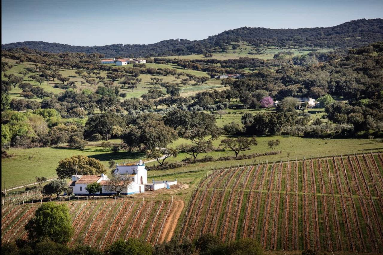 Location: Quinta da Plansel