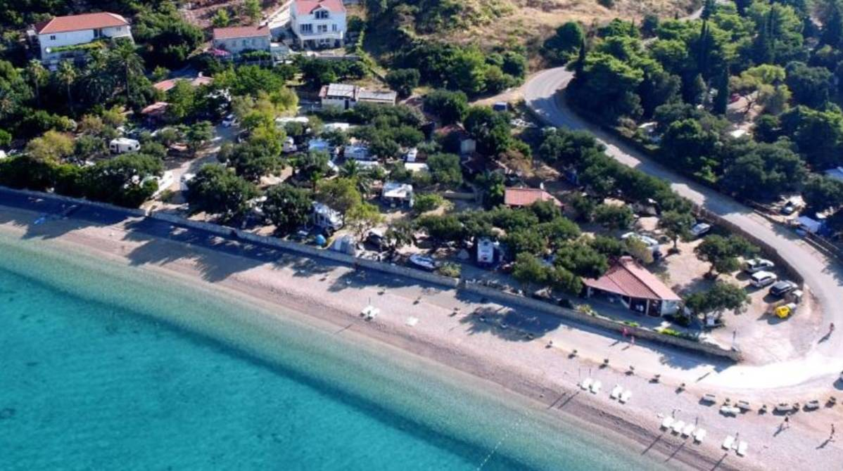 Location: Palme