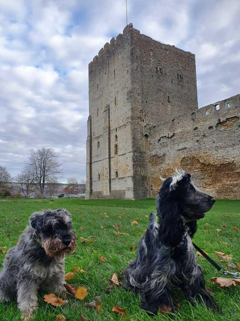 Location: Portchester Castle