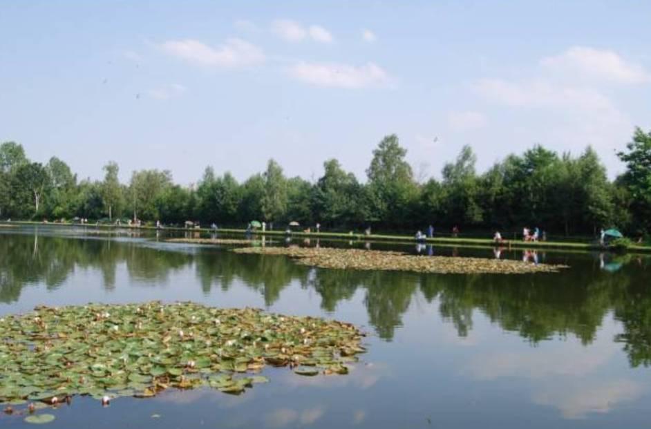 Location: Kampeerverblijfpark Familiestrand