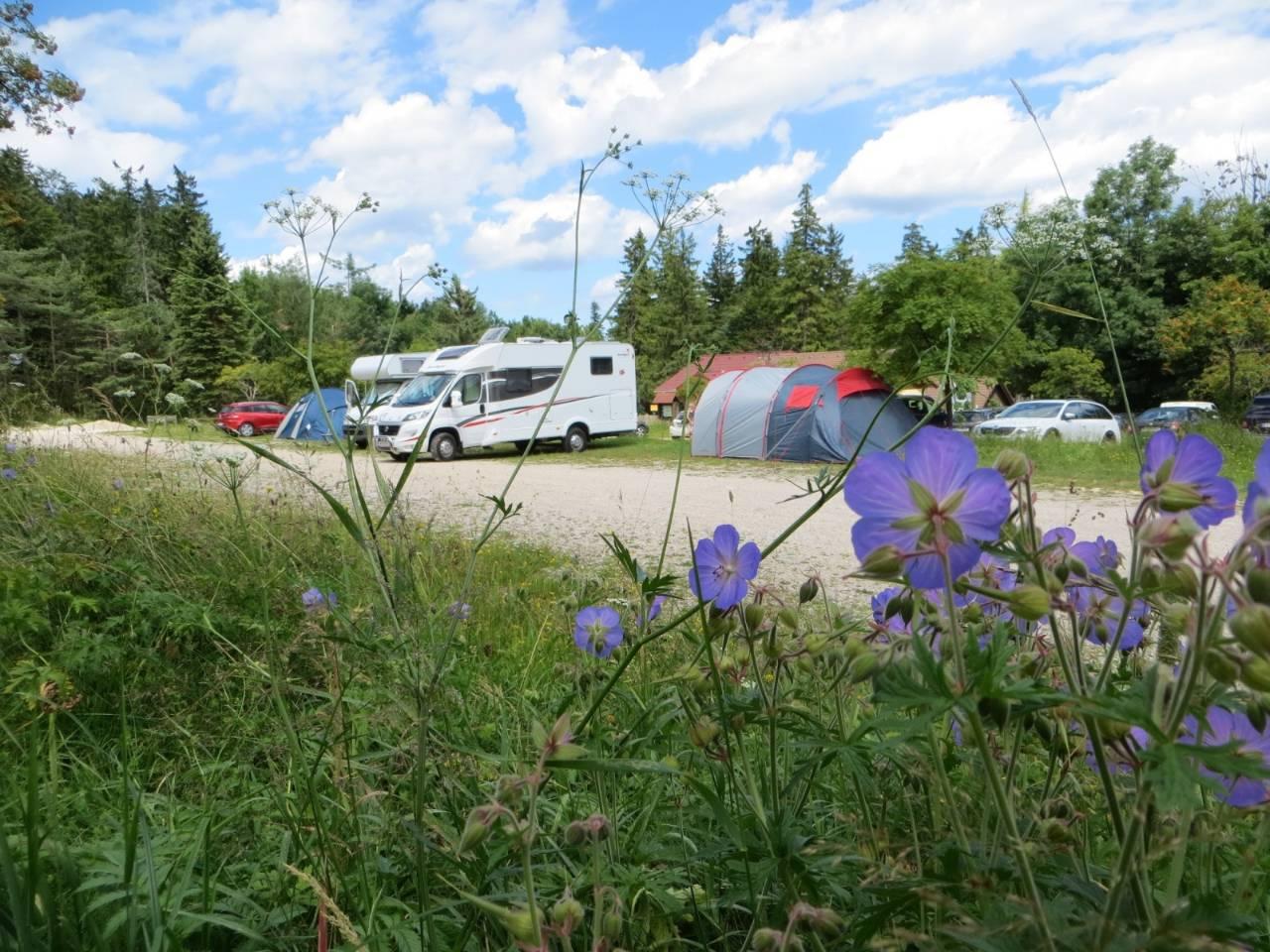 Location: Stellplätze im Naturpark Hohe Wand