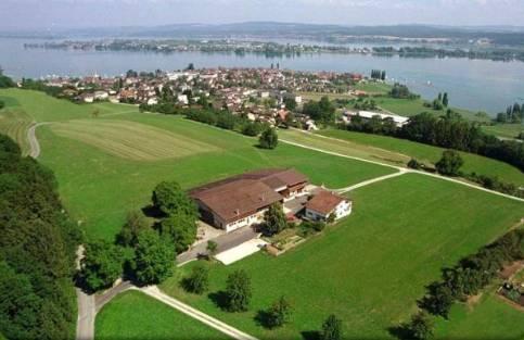 Location: Zelglihof