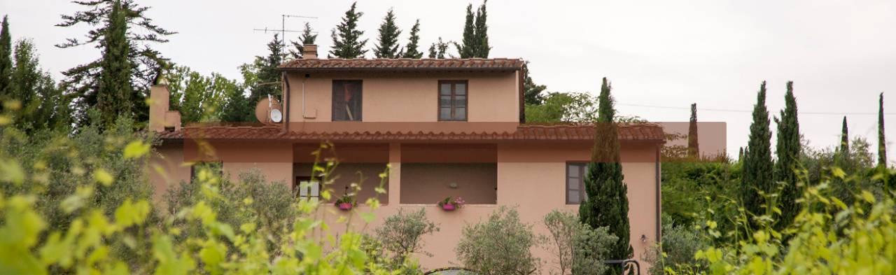 Location: Cipollatico