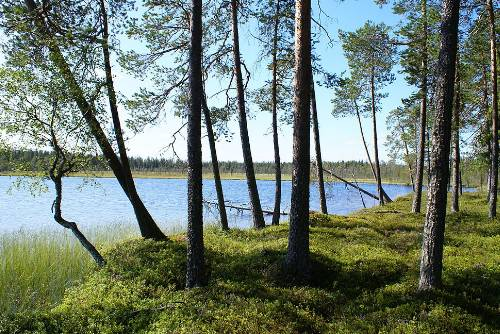 Location: Ahveninen