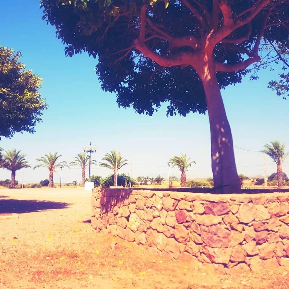 Location: Park Olivares