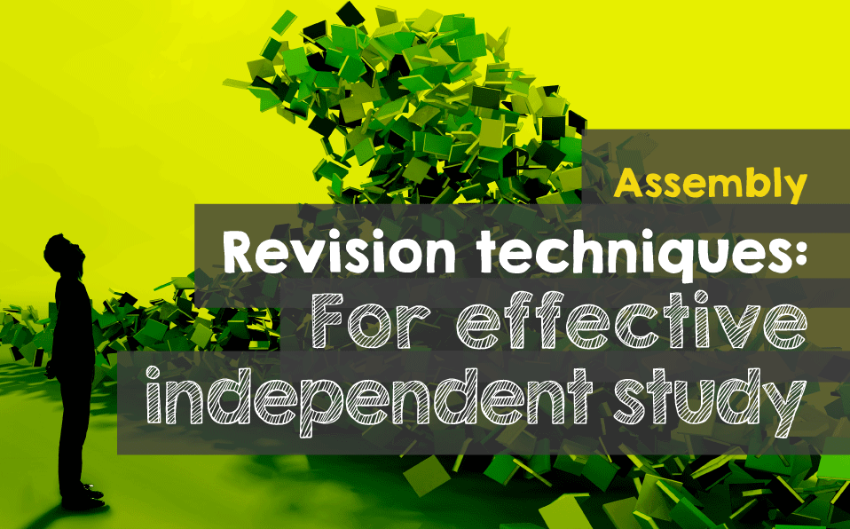 Assembly revision techniques