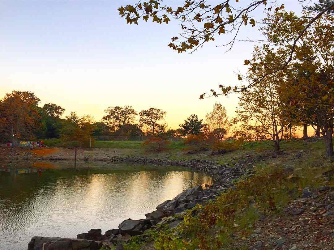 Image of a pond or dam encircled by rocks with greenery and trees in the background. It is sunset.