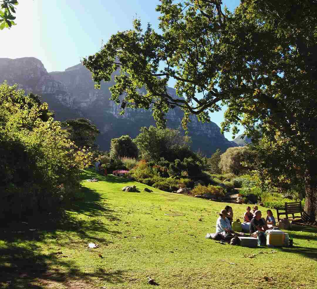Image of a grassy lawn with trees, bushes, greenery and the mountain in the background. a few people sit under a tree with a picnic.