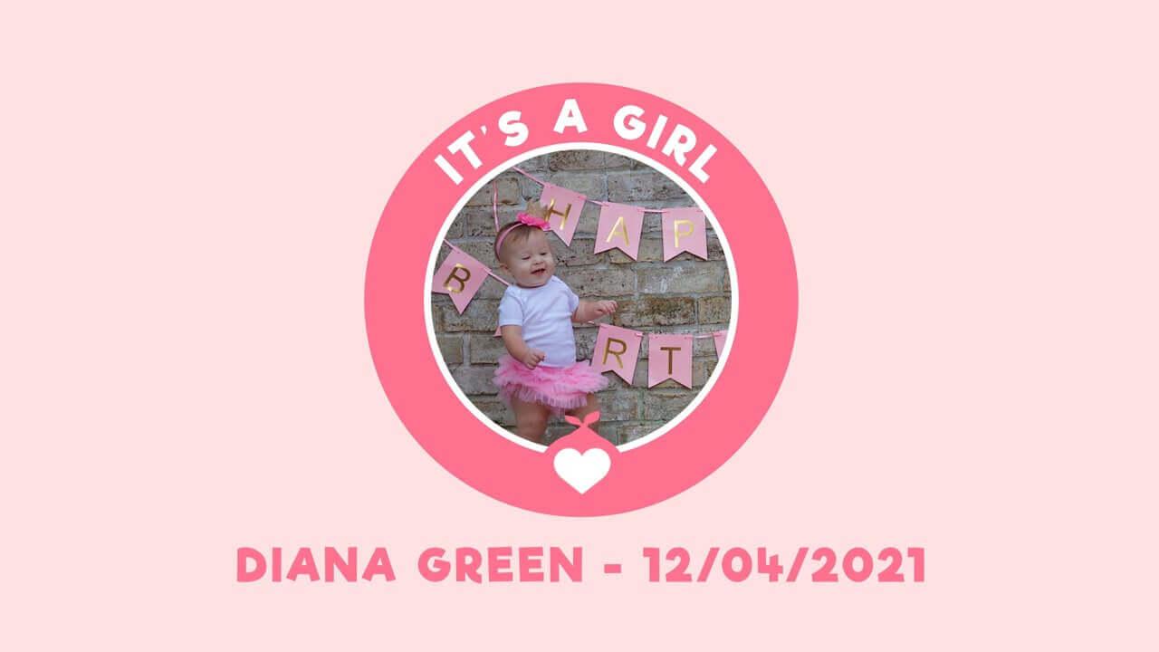 Stork Baby Girl Video Invitation